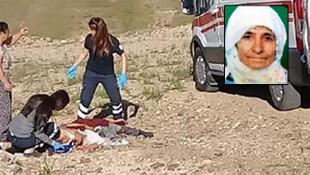 Köpeklerin saldırdığı kadın hayatını kaybetti