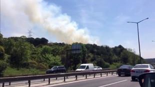 Kavacık'ta ormanlık alanda yangın ! Trafik kilitlendi