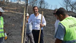 Son 90 günde 200 orman yangını