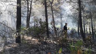 Aydos ormanlarında yangın