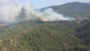Datça'daki orman yangını davalık oldu ! 1 milyon TL'lik tazminat talebi