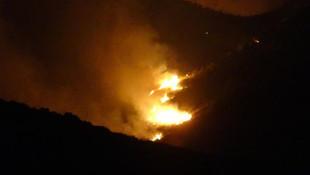 Adana'da orman yangın