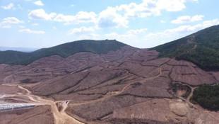 Bakanlıktan Kaz Dağları'nda altın aranmasıyla ilgili açıklama
