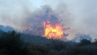 Osmaniye'de Amanos Dağları'nda yangın