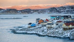 Trump Grönland'ı satın almak istiyor