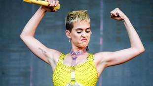 Katy Perry'e bir taciz suçlaması daha