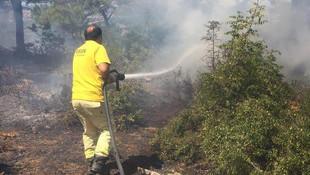 Ormana yıldırım düştü, yangın çıktı