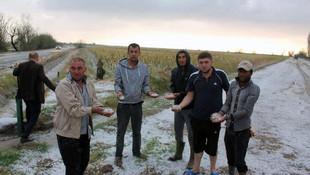 Aksaray'ı dolu vurdu ! 10 bin dekarlık alan zarar gördü