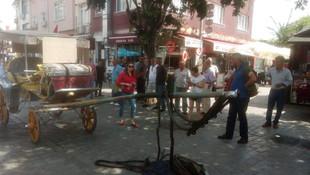 İstanbul Büyükşehir Belediyesi'nden Adalar'daki faytonlar için çalıştay
