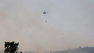Manisa Soma'da orman yangını