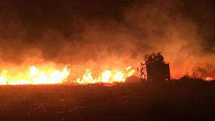 Ciğerlerimiz yanıyor ! Avşa Adası'nda yangın