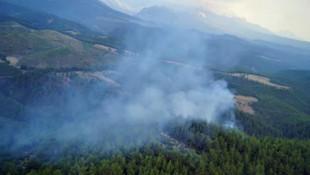 Antalya'da yıldırım düşen ormanda yangın
