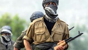 MİT, Jandarma ve Emniyet'ten ortak operasyon: Etkisiz hale getirildi