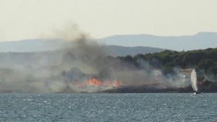 Ayvalık'ta piknik alanında yangın