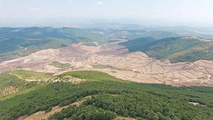 Kaz Dağları hakkında şirketten skandal açıklama