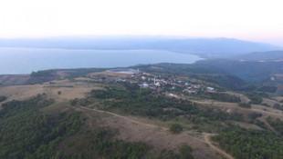 Sıra İznik'e mi geldi ? 750 bin ağaç tehlike altında