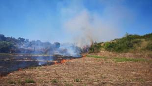 Yangın çıkaran mangalcılar arkalarına bakmadan kaçtı