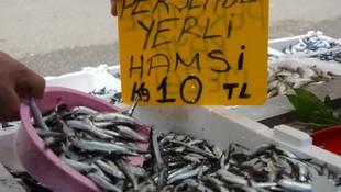 Denizden hamsi fışkırdı ! Fiyatlar 10 liraya düştü
