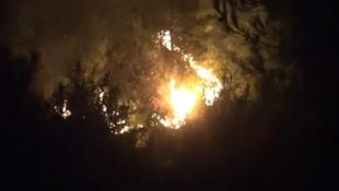 Hatay'da tam 25 farklı noktada orman yangını