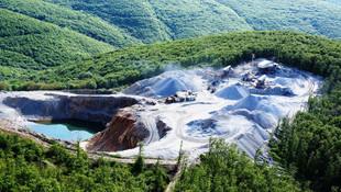 Maden şirketi başvurdu: 17 bin ağaç kesilecek