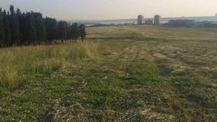 İstanbul'da 1 milyon metrekarelik talan yargıdan döndü