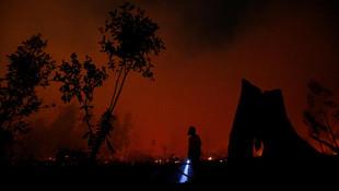 Endonezya'da orman yangını felaketi !