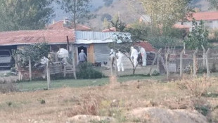 6 bin tavuk ölüsü bulunmuştu... Karantinaya alındı