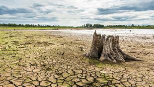 Önce kuraklık sonra kıtlık! Uzmanlardan kritik uyarı