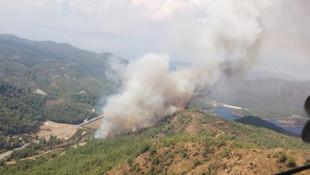 Marmaris'te bir orman yangını daha