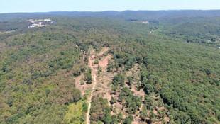 Skandal ! Toplam orman alanının %17'si tapuda gözükmüyor!