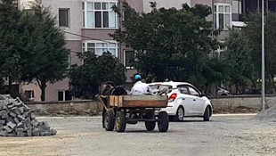 Trafik levhalarını at arabasıyla götürürken yakalandı
