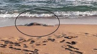 Sakarya sahilinde iskelet bulundu