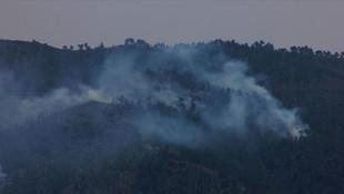 Terör örgütü PKK'nın yangın yalanı!