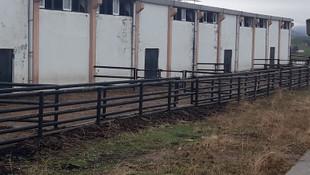 İkinci Çiftlik Bank vakası: 20 milyon TL'lik vurgun!