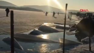 Buzda faciadan dönüldü! Kırılan buz onlarca aracı yuttu