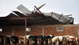 Malkara'da şiddetli rüzgar çatıları uçurdu !
