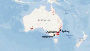 Avustralya'da yangından sonra yeni kabus !