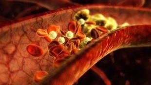 Sigara içenler dikkat! Bu besinler damarları tertemiz yapıyor