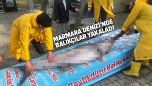 Marmara Denizi'nde bir dev yakalandı!