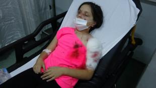 Pitbull köpeklerin saldırısına uğrayan kız çocuğu ölümden döndü!