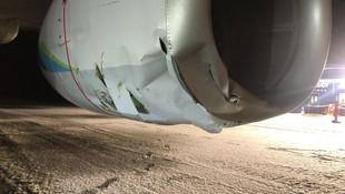 Yolcu uçağı ''boz ayıya'' çarptı!