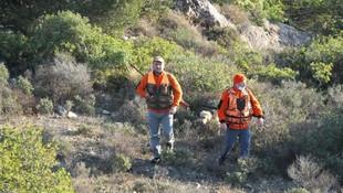Tatil sitesinin kabusu oldular! İmdatlarına avcılar yetişti