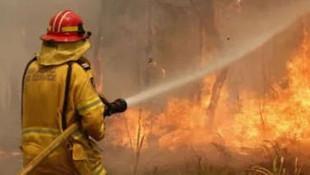 Hatay İskenderun'da bir yangın daha!
