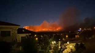 İzmir Foça'da orman yangını
