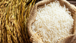 Çeltik ve pirinçte gümrük vergisi düşürüldü