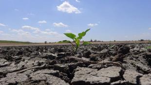 Uzman isim uyardı! Türkiye'de kuraklık tehlikesi giderek artıyor
