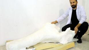 Türkiye'de bulundu; Tam 7.5 milyon yıllık fosil