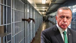 Af yasası Erdoğan'ın masasında! 4 suç kapsam dışında kalacak