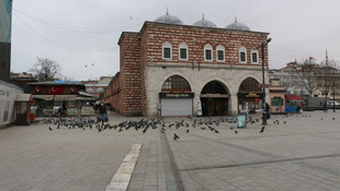 İstanbul'da trafik yok, sokaklar kedilere, kuşlara, köpeklere kaldı!