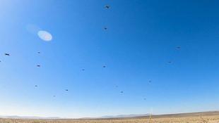 İşte yerli kamikaze drone ''Kargu''